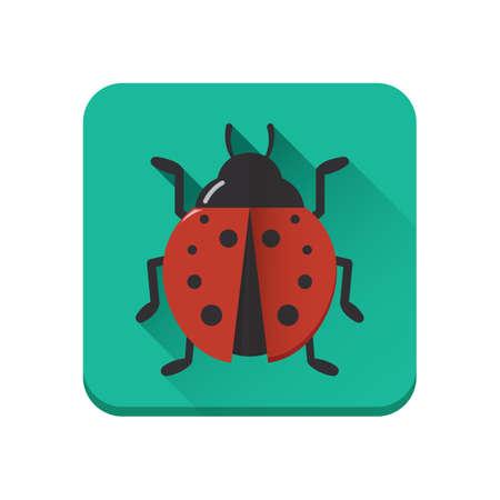 ladybird: ladybird