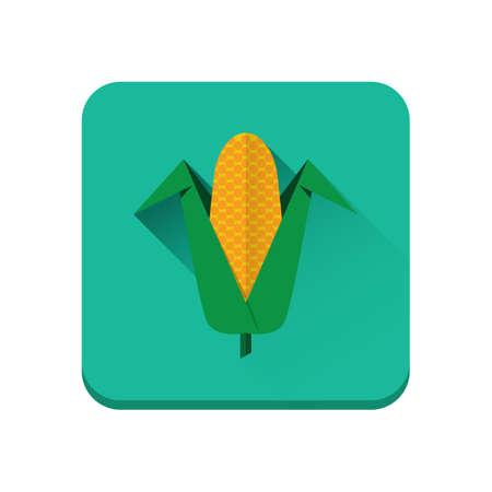 maize cultivation: corn