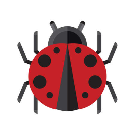 lady bug: geometrical lady bug