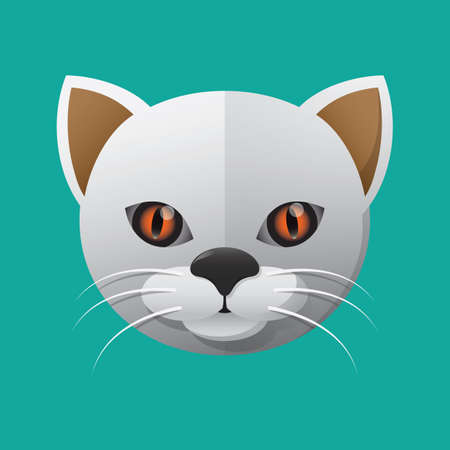 felines: cat