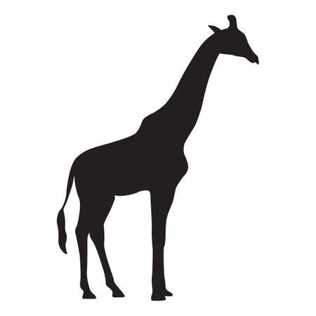 silhouet van giraffe Vector Illustratie