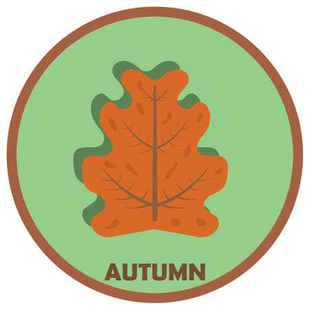 leaf: autumn maple leaf