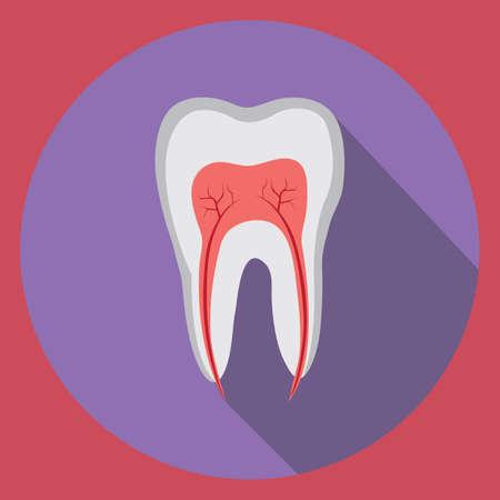 tooth 版權商用圖片 - 81469452