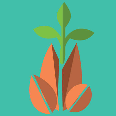 plant growing: plant growing Illustration