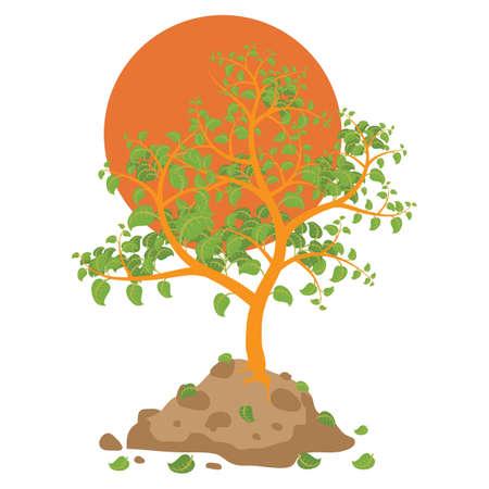 fallen: tree with fallen leaves