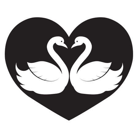 swans: love swans