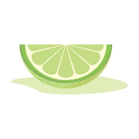 slice: lime slice Illustration