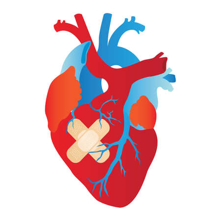 wounded: wounded human heart Illustration