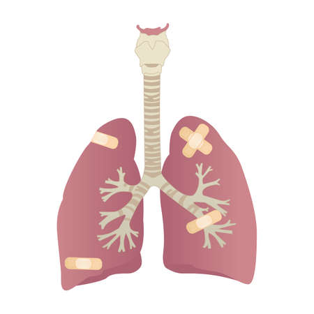 wounded: wounded human lungs Illustration