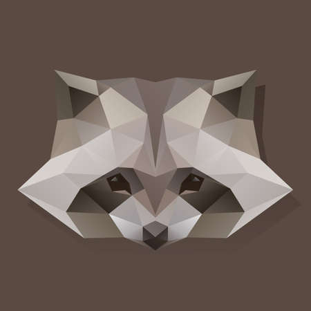 faceted: faceted raccoon Illustration