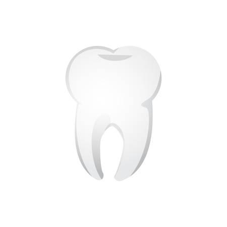 molar: tooth