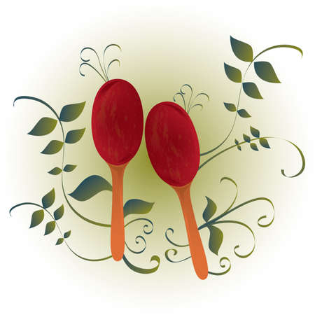 maracas: maracas Illustration