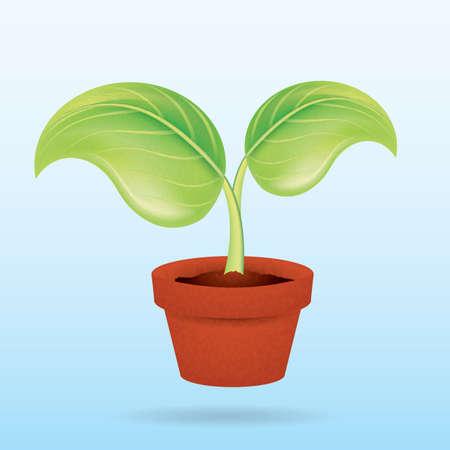 plant pot: plant in pot