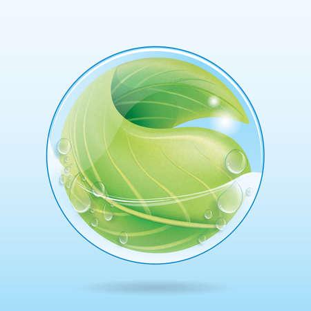 drop water: eco water drop