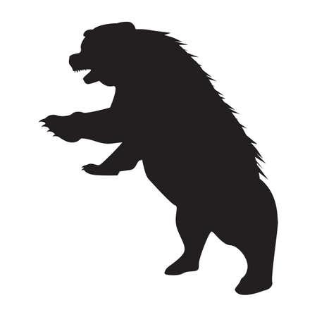 silhouette di orso
