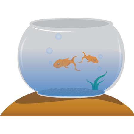 fish bowl: fish bowl