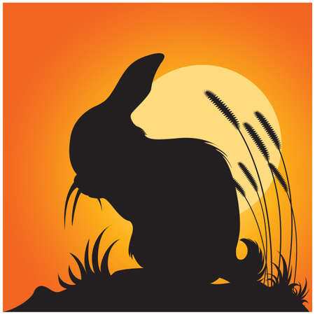 silueta del conejo