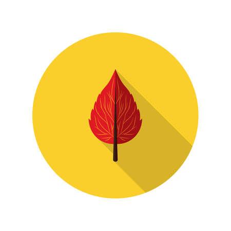 leaf: birch leaf