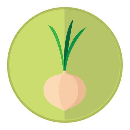 turnip: turnip