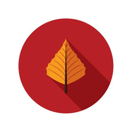aspen: aspen leaf