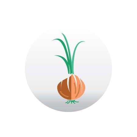 spring: spring onion Illustration