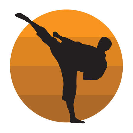 karate fighter: silhouette of a karate fighter