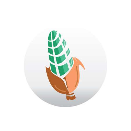 corncob: corn