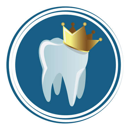 molar: tooth with crown