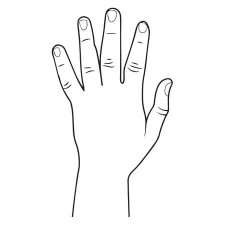 finger nails: left hand Illustration