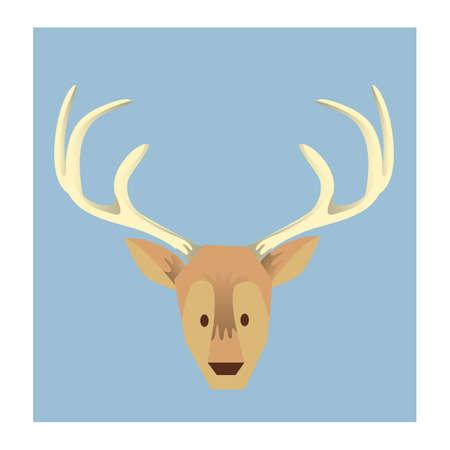 face to face: reindeer face