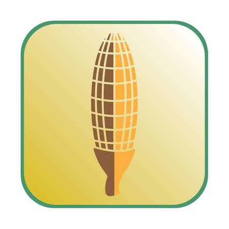 corn on the cob: corn cob