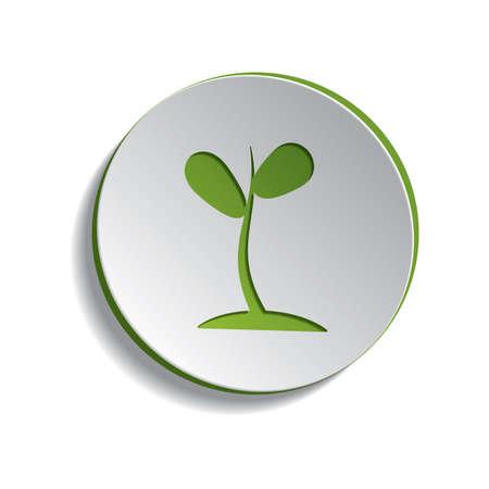 sapling: plant sapling
