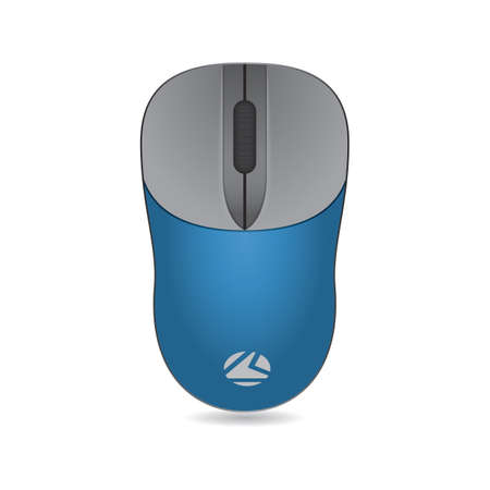 input device: computer mouse