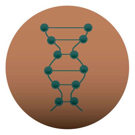 chromosomes: dna