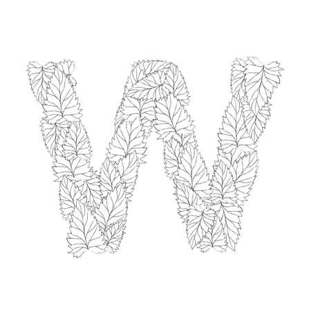 letter w: letter w