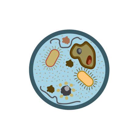 microorganisms: microorganisms