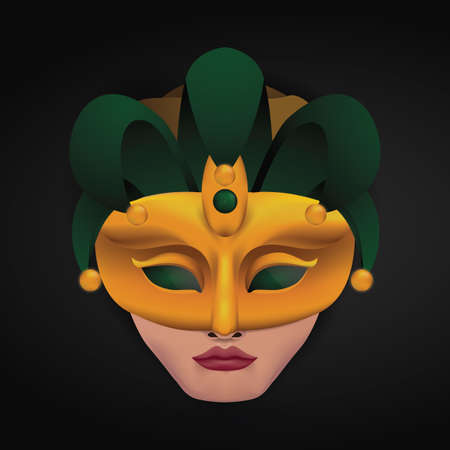 venetian mask: person wearing venetian mask Illustration