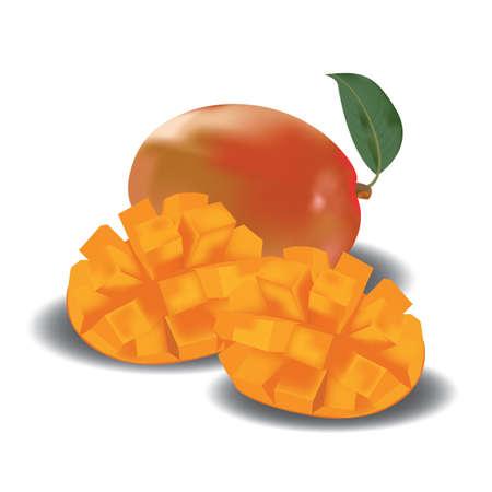 mango slice: mango with slice Illustration