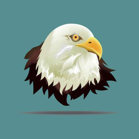face to face: eagle face Illustration
