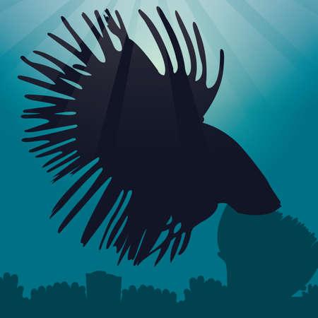 betta: betta fish silhouette
