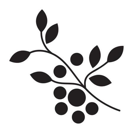 cranberries: branch of cranberries