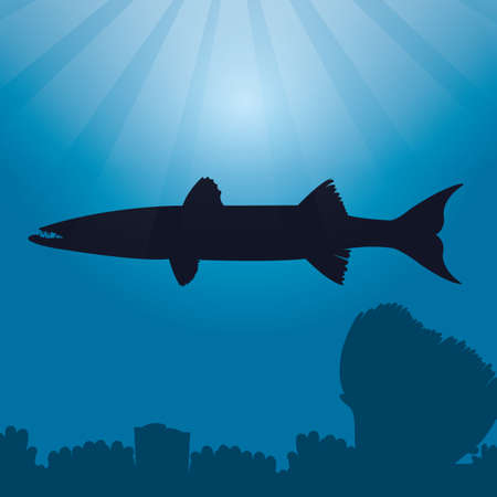 barracuda: barracuda silhouette Illustration