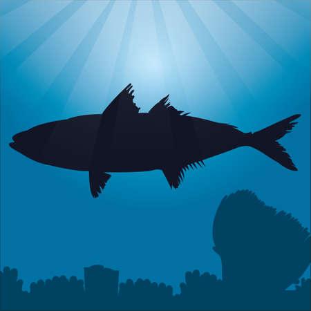 atun rojo: silueta de atún rojo