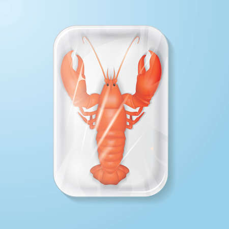 fresh food: packed lobster
