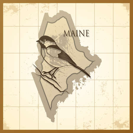chickadee: map of maine state