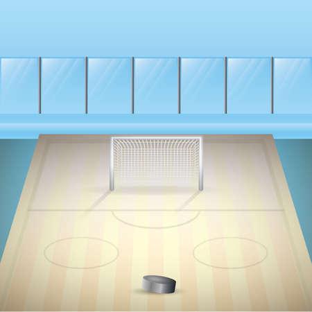 rink: ice hockey rink