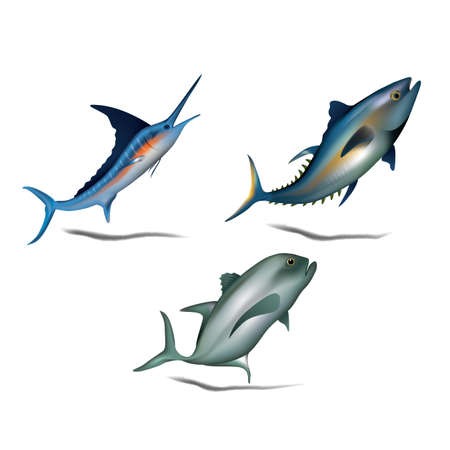 bluefin tuna: set of fishes Illustration