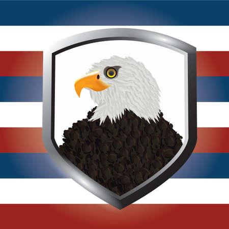 eagle badge: usa eagle badge