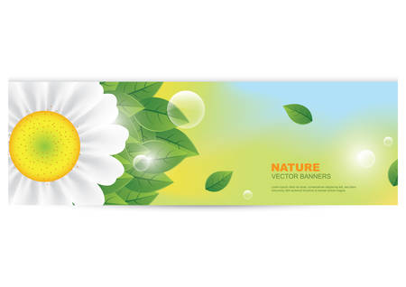 copyspaces: nature banner with sunflower Illustration