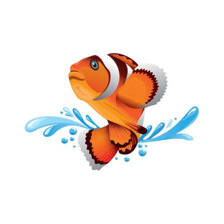 clownfish: clownfish Illustration